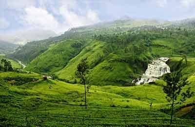 Nuwara Eliya Sri Lanka Tours